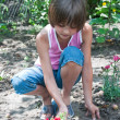 Sweet little girl in the garden — Stock Photo