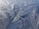 Frosty pattern on the window — Stock Photo