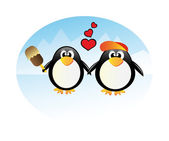 Penguin in love — Foto Stock