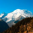 Mt. Rainier - Stock Photo