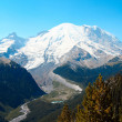 Mt. Rainier — Foto Stock