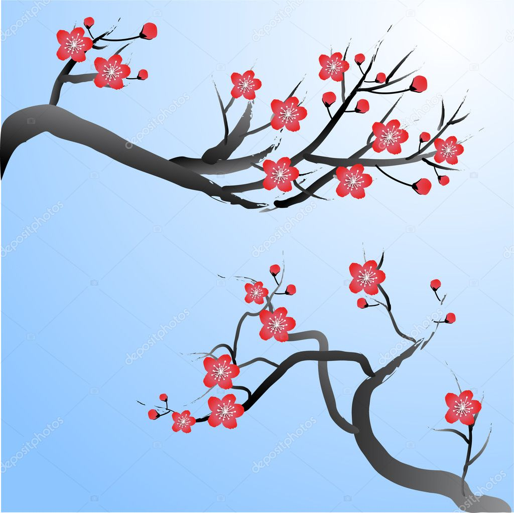 Plum blossoms — Stock Vector #3221293