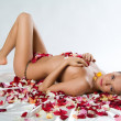 Royalty-Free Stock Photo: Nude And Rose Petals