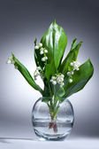 Lily Of The Valley — Foto Stock