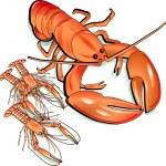 Sea food — Stock Vector