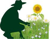 Gardener — Stock Vector