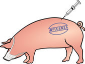 Swine influenza fore-handedness — Stock Vector