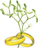 Wedding rings mistletoe — Stock Vector