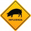 Pig influenza — Stock Vector