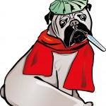 坏的狗 — 图库矢量图片