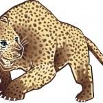 Leopard — Stock Vector