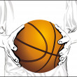 Basketball hands - Stock Vector