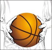 Basketball hands — Stock Vector