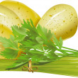 Stock Vector: Parsley potatoes chive