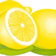 Stock Vector: Lemon