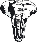 Elephant — Vector de stock