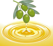 Extraction of olive oil — Vetor de Stock