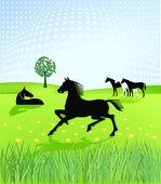 Horses paddock — Stock Vector