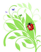 Ladybird on trailing plant — Stock Vector