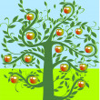 Apple tree — Stock Vector