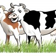 2 happy cows — Stock Vector