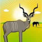 Samec kudu — Stock vektor