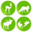 Green wildlife — Stock Vector #3536967