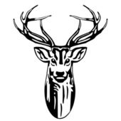 Deer head — Stock Vector
