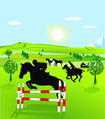 Horseback riding and show jumping — Vecteur