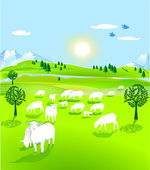 Flock of sheep — Stock Vector