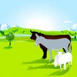 Donkey, bull and lamb — Stock Vector