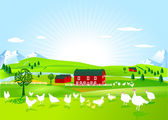 Poultry farm — Stock Vector