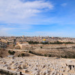 The Panorama Jerusalem — Stock Photo
