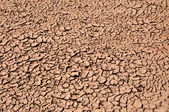 Arid Soil — Stock Photo