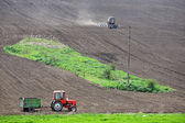 Spring tillage — Stock Photo