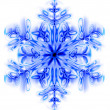 Snow flake — Stock Photo #3625845