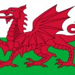 Wales Flag — Stock Photo #3780296
