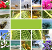 Rest in tropics. Collage — Stock Photo