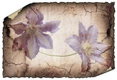 Vintage background image with flowers. — Stock Photo