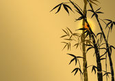 Branches of a bamboo — Stock Photo