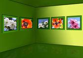 春天的花朵的画廊 — 图库照片