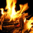 Fire flames — Stock Photo #3177163