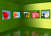Gallery of flowers. — Stock Photo