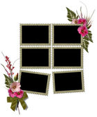 Isolated frames is decorated of flowers hollyhocks. — Stock Photo