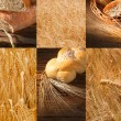 Puzzle with bread, fields and spikelets — Stock Photo
