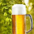 Still life with draught beer — Stockfoto