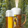 Still life with two beers — Stockfoto