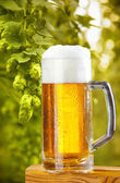 Still life with draught beer — Stock Photo