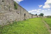 Protective Wall — Stock Photo
