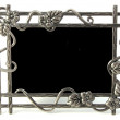 Picture frame — Stock Photo #2956194